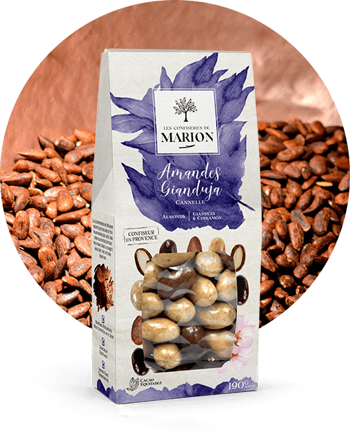 Amandes Gianduja Cannelle